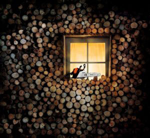 STIHL firewood log-pile window