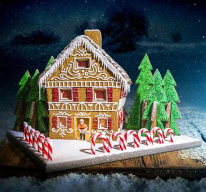 Richard Burr STIHL Gingerbread House
