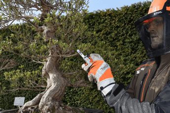 Bonsai chainsaw