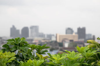 city gardens