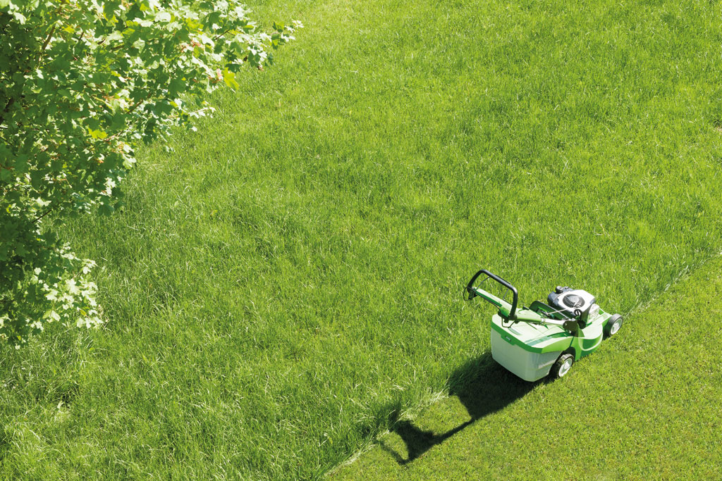 Lawn Mower Top Tips