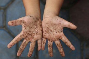 dirty hands with compost on