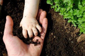 encourage children to play in the garden