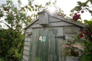 STIHL garden shed