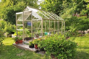 Greenhouse after cleaning