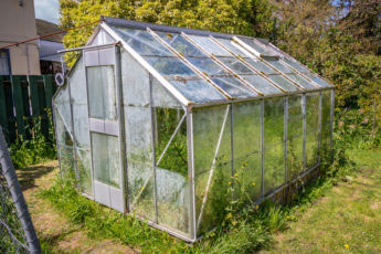 Dirty Greenhouse