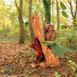 Owl Wood Carving at Meadow Park