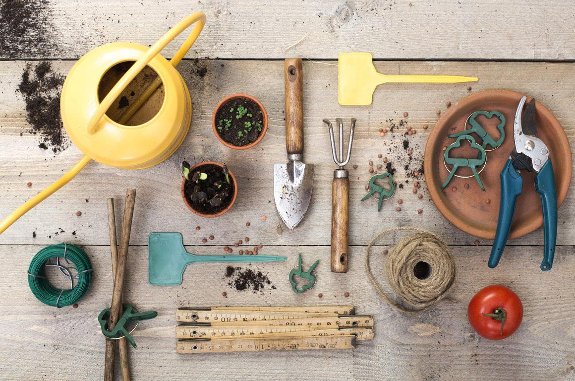 Vegetable Gardening Tools
