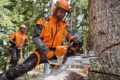 STIHL introduces the class leading MS 462 forestry chainsaw