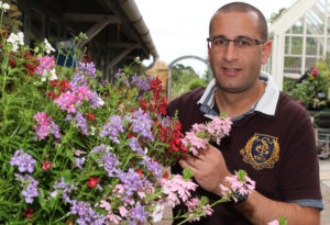 Marc Rosenburg at Powderham Plant Centre