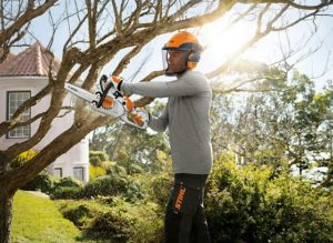 Pruning trees with the STIHL MS 150