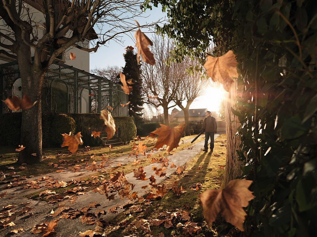 how autumn leaves can help your garden