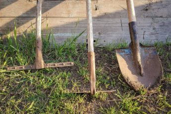 how to organise your allotment