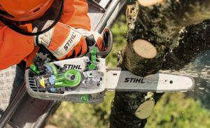 MS 194 T Cutting Tree