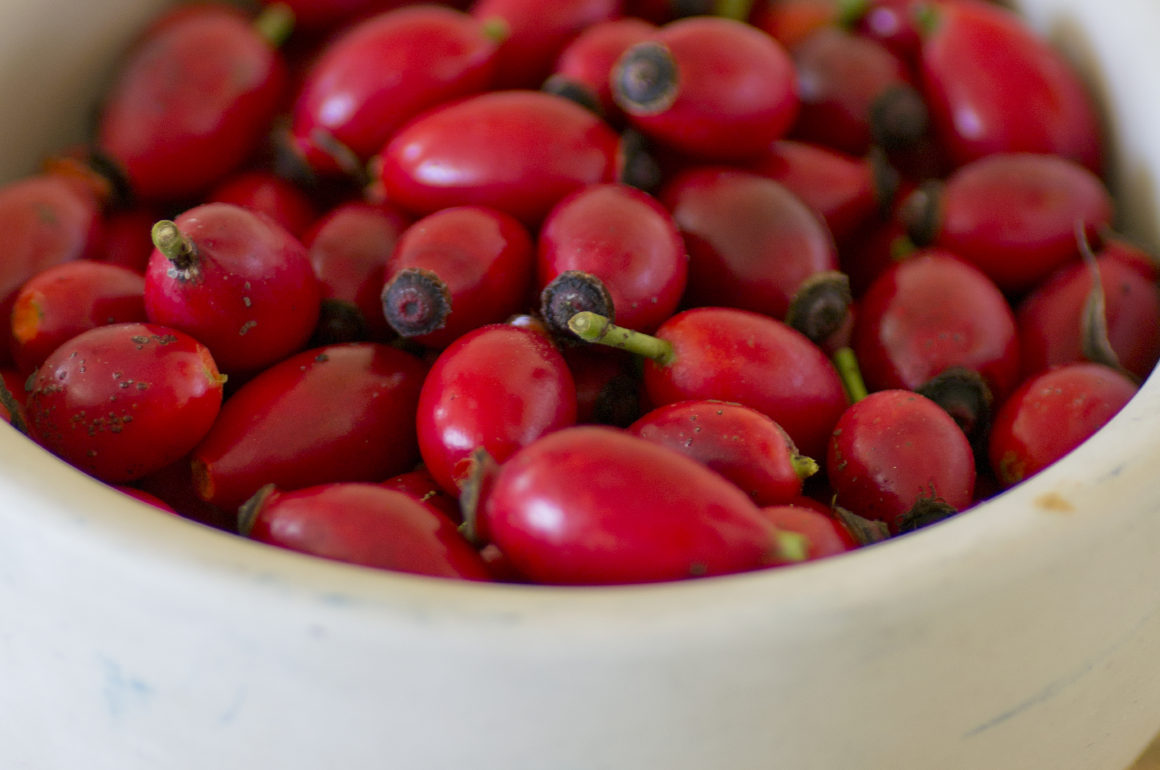 a bowl of rosehips