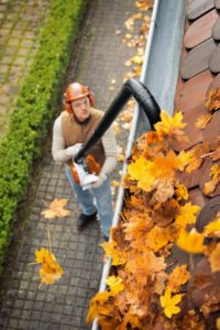 BGA 56 Cordless Leaf Blower With Gutter Attachment