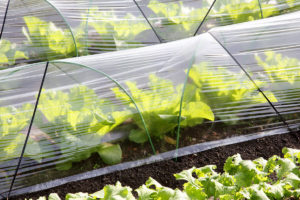 make your own polytunnel