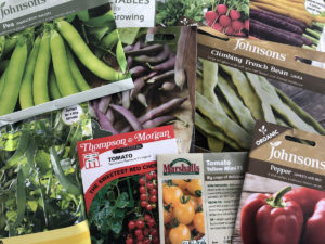 edible seeds to sow