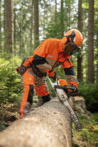Arborist Cross Cutting