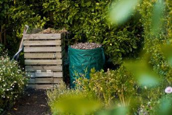 Compost Bin On Allotment