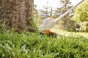 STIHL FSA 57 cordless grass trimmer