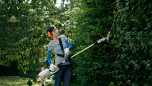 STIHL HLE Long Reach Hedge Trimmer