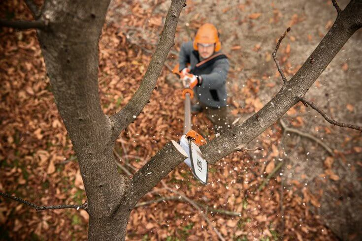 STIHL pole pruner