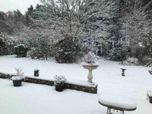 froze lawns in the winter