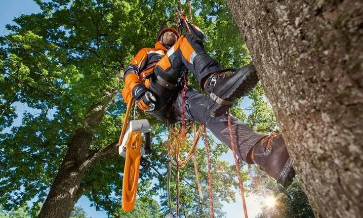 STIHL Protective Chainsaw trousers