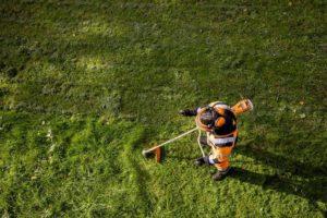 STIHL FSA 135 Cordless Grass Trimmer