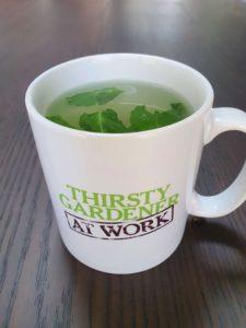 mint tea in a mug