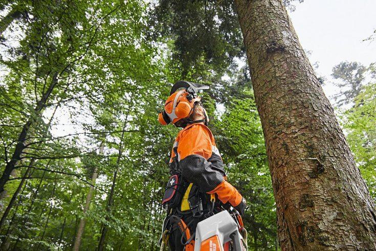 The STIHL ADVANCED X-CLIMB helmet for arborists working in trees