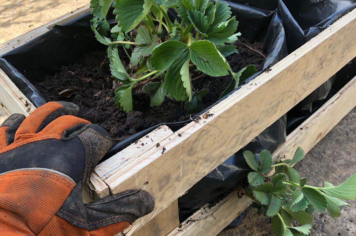 make your own pallet planter box