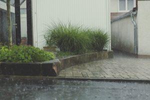 install a living driveway