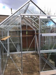 clean your greenhouse to clean out pests