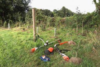 use STIHL cordless tools to plant trees